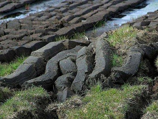 Peats cut and left to dry in the open air