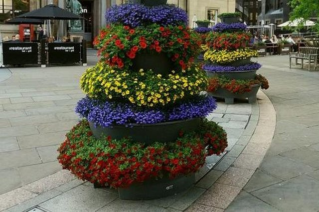 Even a small window box or planter can enter the competition